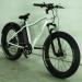 Электро фэтбайк El-Sport bike TDE-03 350w