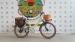 Электровелосипед Elbike Monro Vip