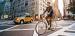 Электровелосипед BESV Cat CF1 задний привод
