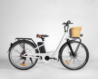 Электровелосипед GreenCamel Briz (R26 350w 36v Li-ion 10Ah)