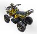 Электроквадроцикл детский GreenCamel Gobi K21 (36V 800W R6 цепной привод)