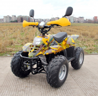 Электроквадроцикл детский GreenCamel Gobi K600 (36V 800W R7 цепной привод)