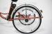 Трехколесный электровелосипед трицикл GreenCamel Trike 24 (R24 500w Li-ion 48v 15Ah)