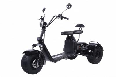Трехколесный электроскуетр (трицикл) Kugoo Citycoco C5 2000w 20Аh 60v