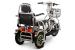 Трехколесный электроскутер (трицикл)  Transporter Pro (Li-ion)