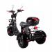 Трехколесный электроскутер трицикл SkyBoard CityСoco Trike BR40 Pro 3000w 60v