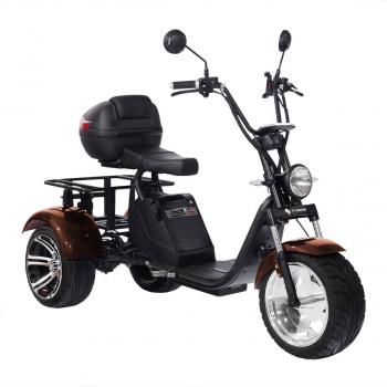 Трехколесный электроскутер трицикл SkyBoard CityСoco Trike BR80 2000w 60v